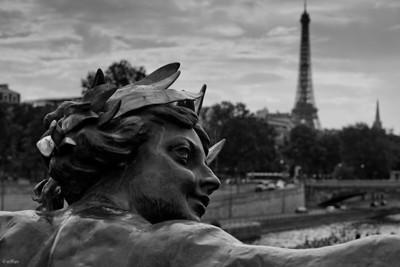 212 - Parisian Tourist in Paris